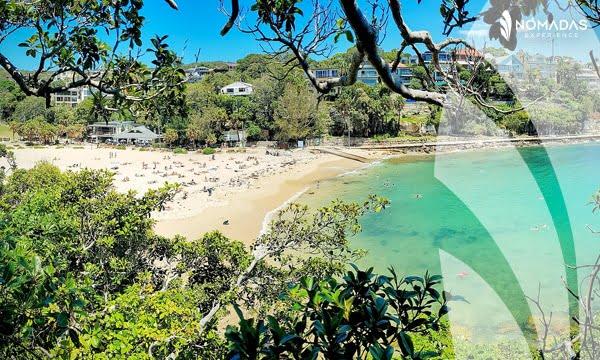 Shelly Beach- Sydney