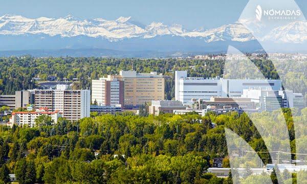 Becas para estudiar_en Canadá Calgary University