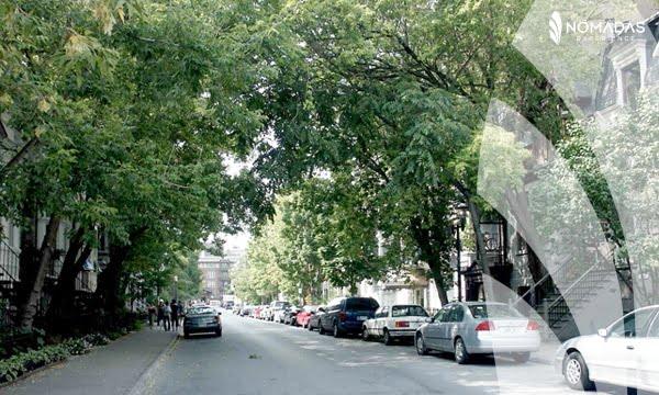 Vivir en Montreal_McGill Ghetto
