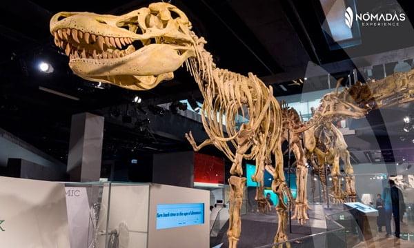 Museo en Australia, Melbourne.