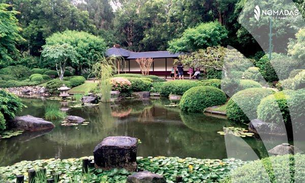 Botanic Garden, Brisbane, Australia