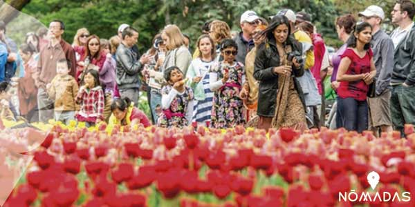 Festival Canadiense del Tulipán