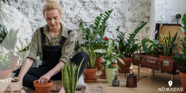 trabajar en Gardener (Jardinera)en Australia